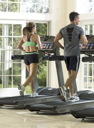 Landice Club Treadmills
